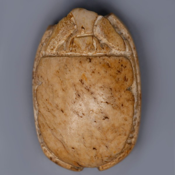 Canaanite Seatite Scarab with a Wild Animal