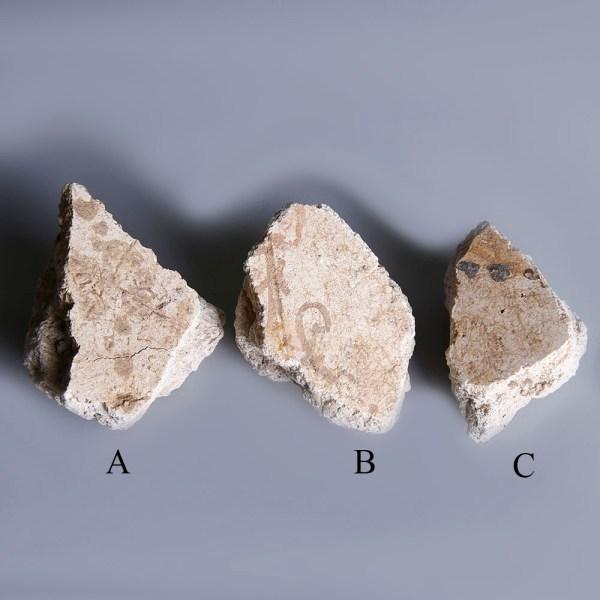 Pompeian Plaster Fragments