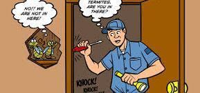 Cara Mengetahui Keberadaan Rayap di Rumah Anda