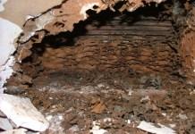 kerusakan akibat semut (2)