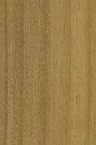 kayu cempaka (2)