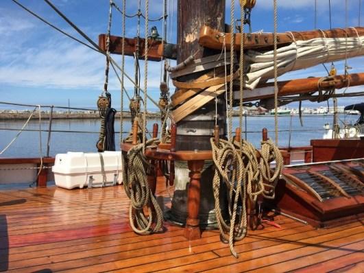 penyebab kayu kapal rusak