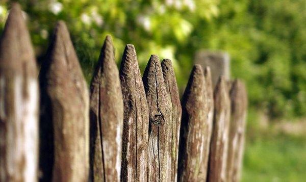 kayu keropos