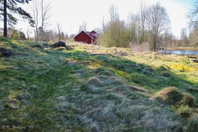 roadtrip_småland-15