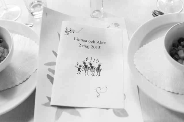 bröllop_linnea_alexander-191