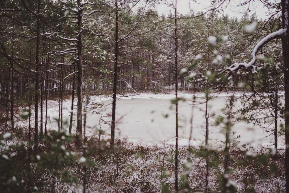 vinter_gullringen-14