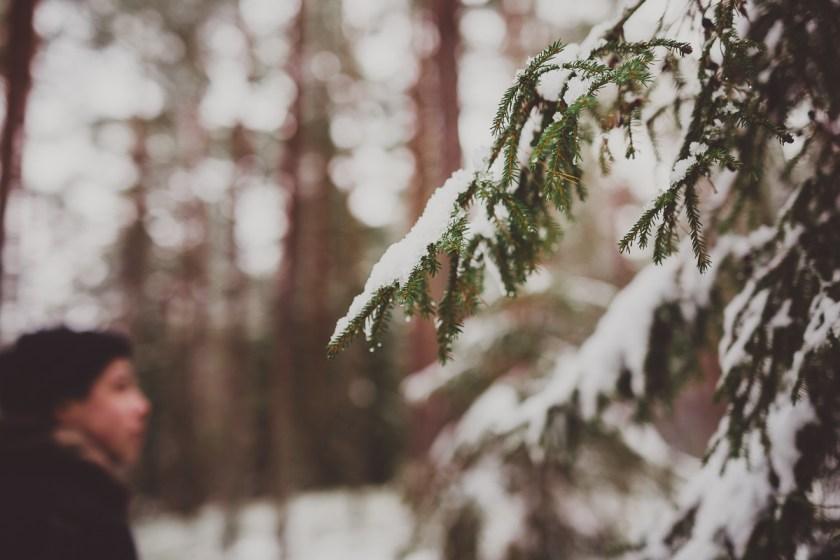 vinter_gullringen-21