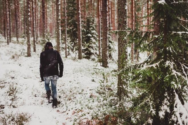 vinter_gullringen-9