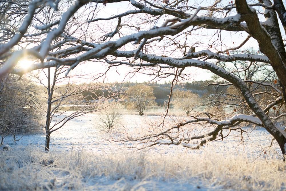 vinterbilder-17