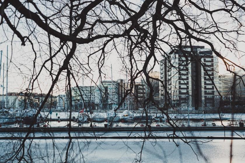stockholm_antligenvilse-37