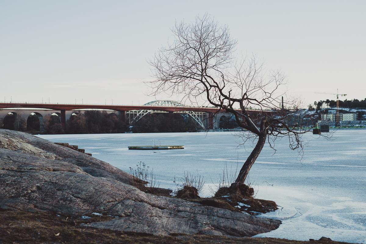stockholm_antligenvilse-47