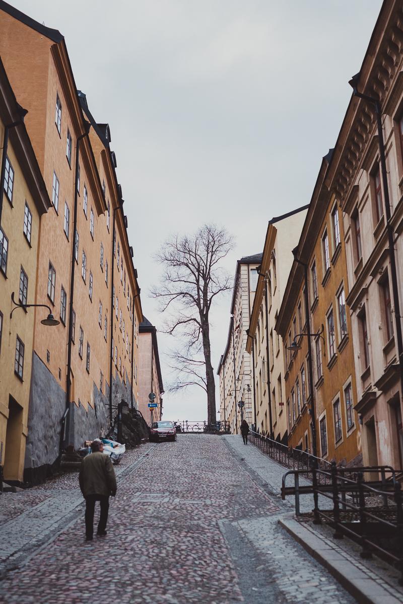 stockholm_antligenvilse-57