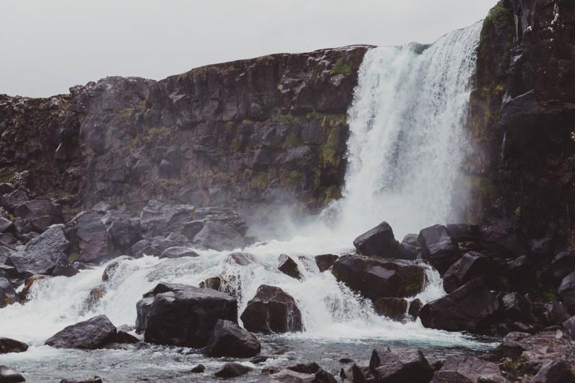 stockholm_antligenvilse_islands_vidder-25