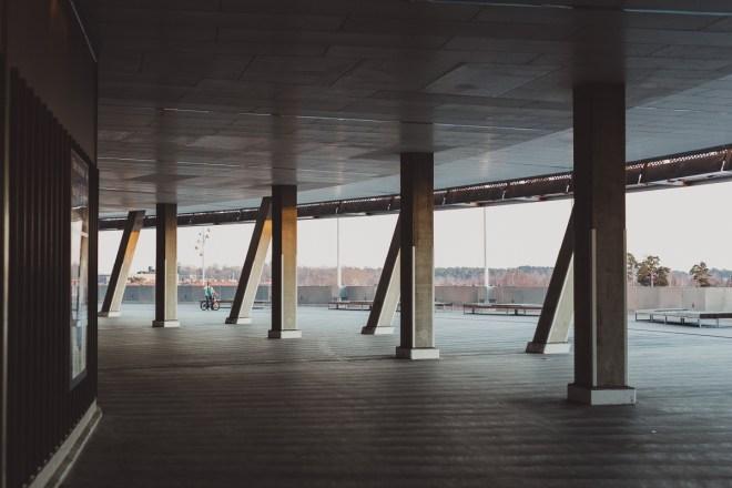 stockholm_antligenvilse_skate-14