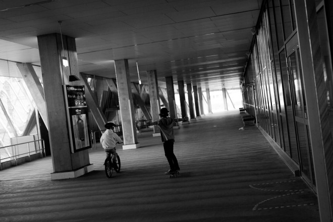 stockholm_antligenvilse_skate-16