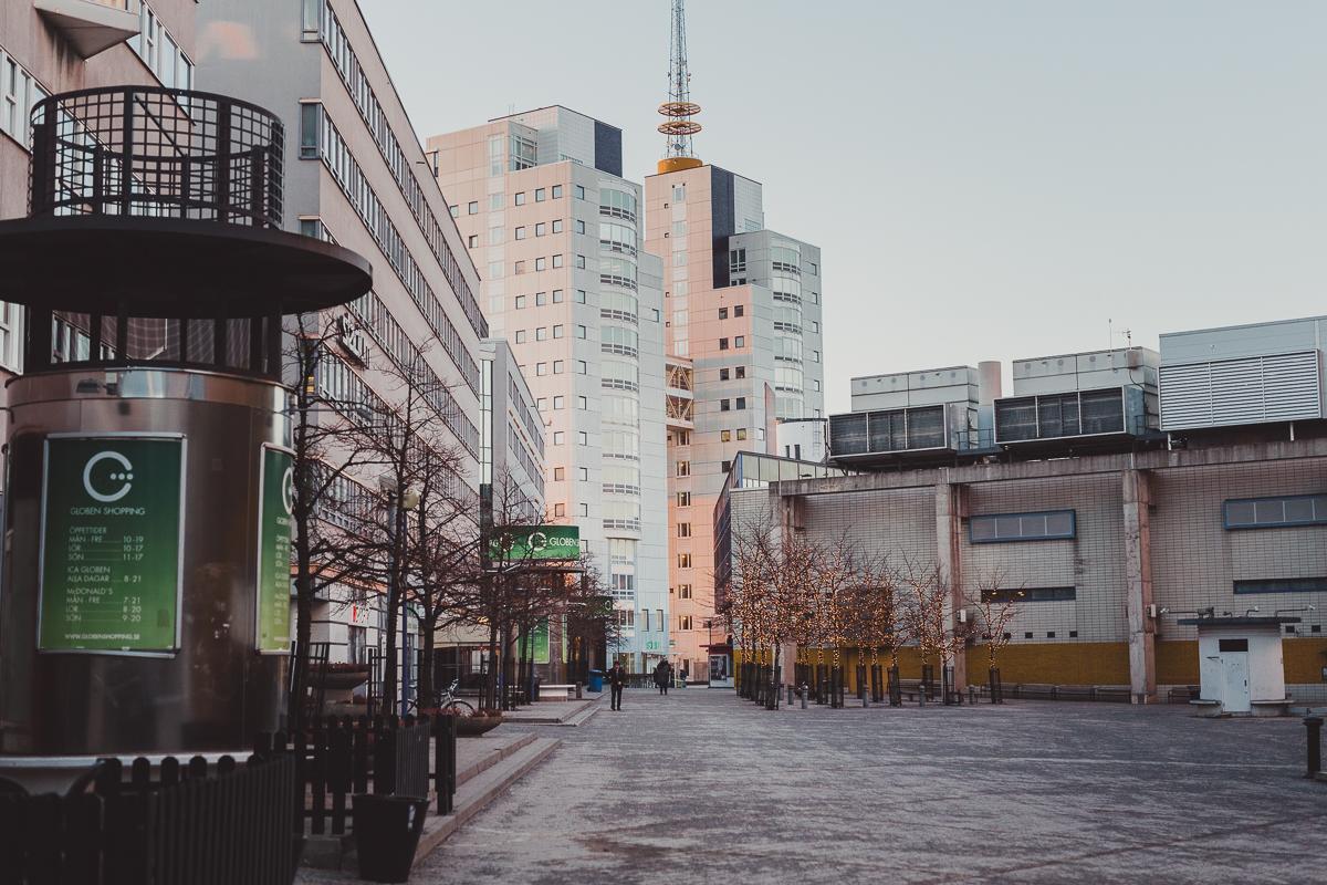 stockholm_antligenvilse_skate-30
