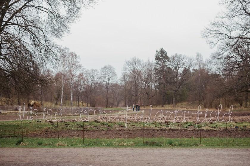 antligenvilse_stockholm-32