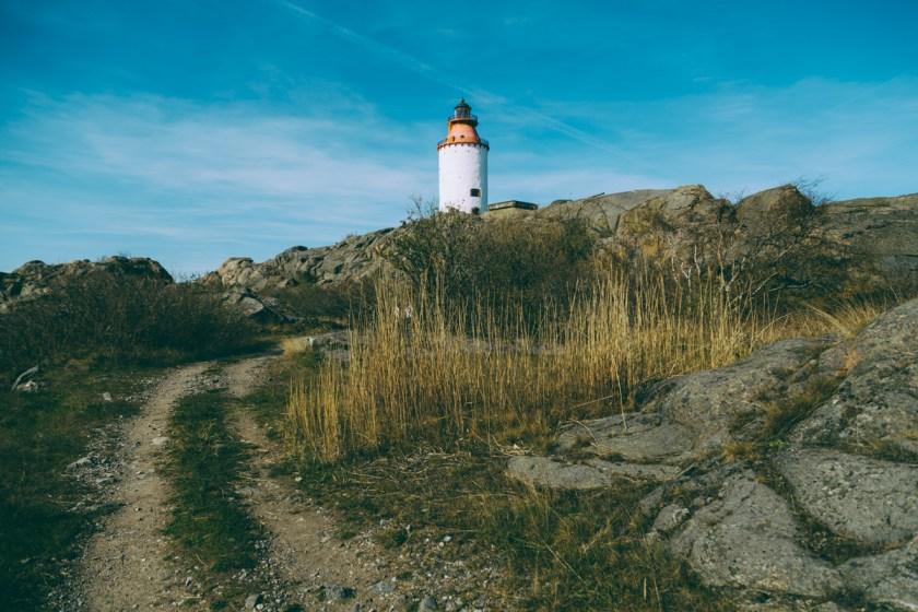 antligenvilse_landsort-61