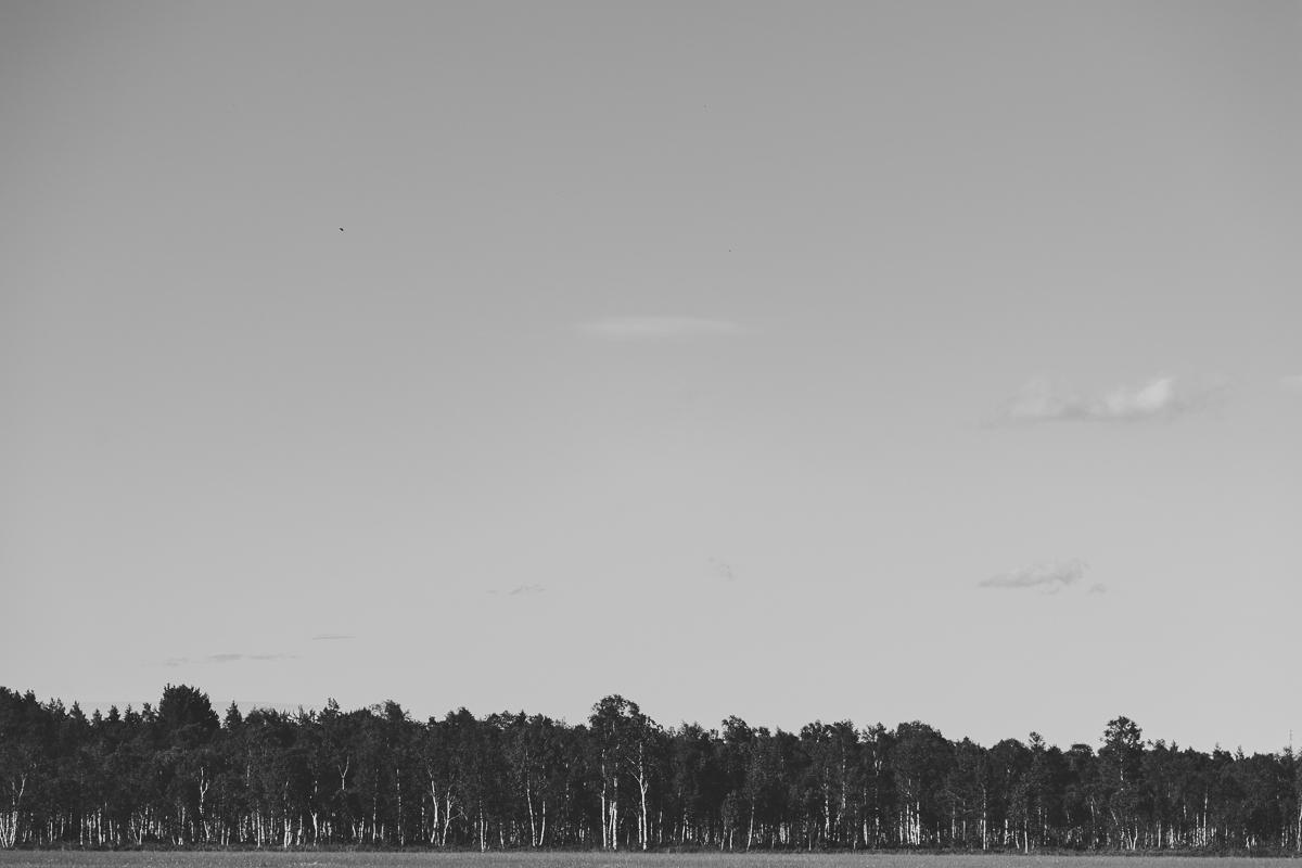 farnebofjarden-53