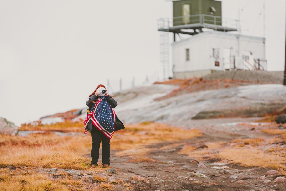 arktisk_oken_gronland-2