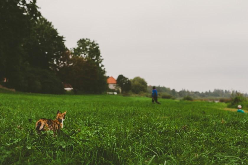 lettland_roadtrip-70