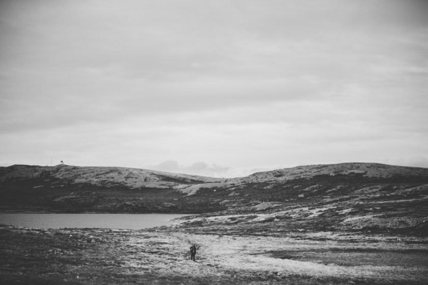 arktisk_oken_gronland-43