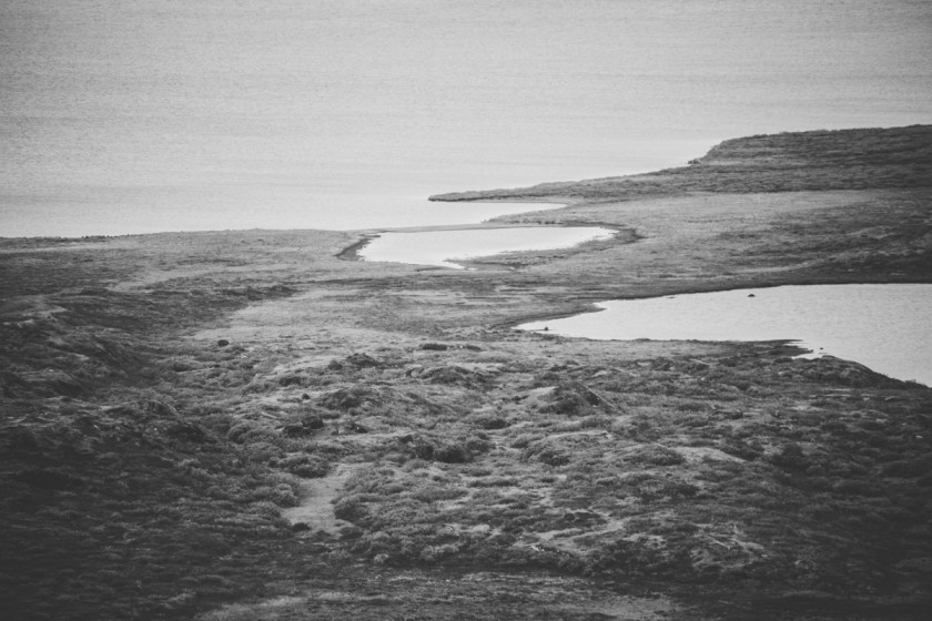 arktisk_oken_gronland-67