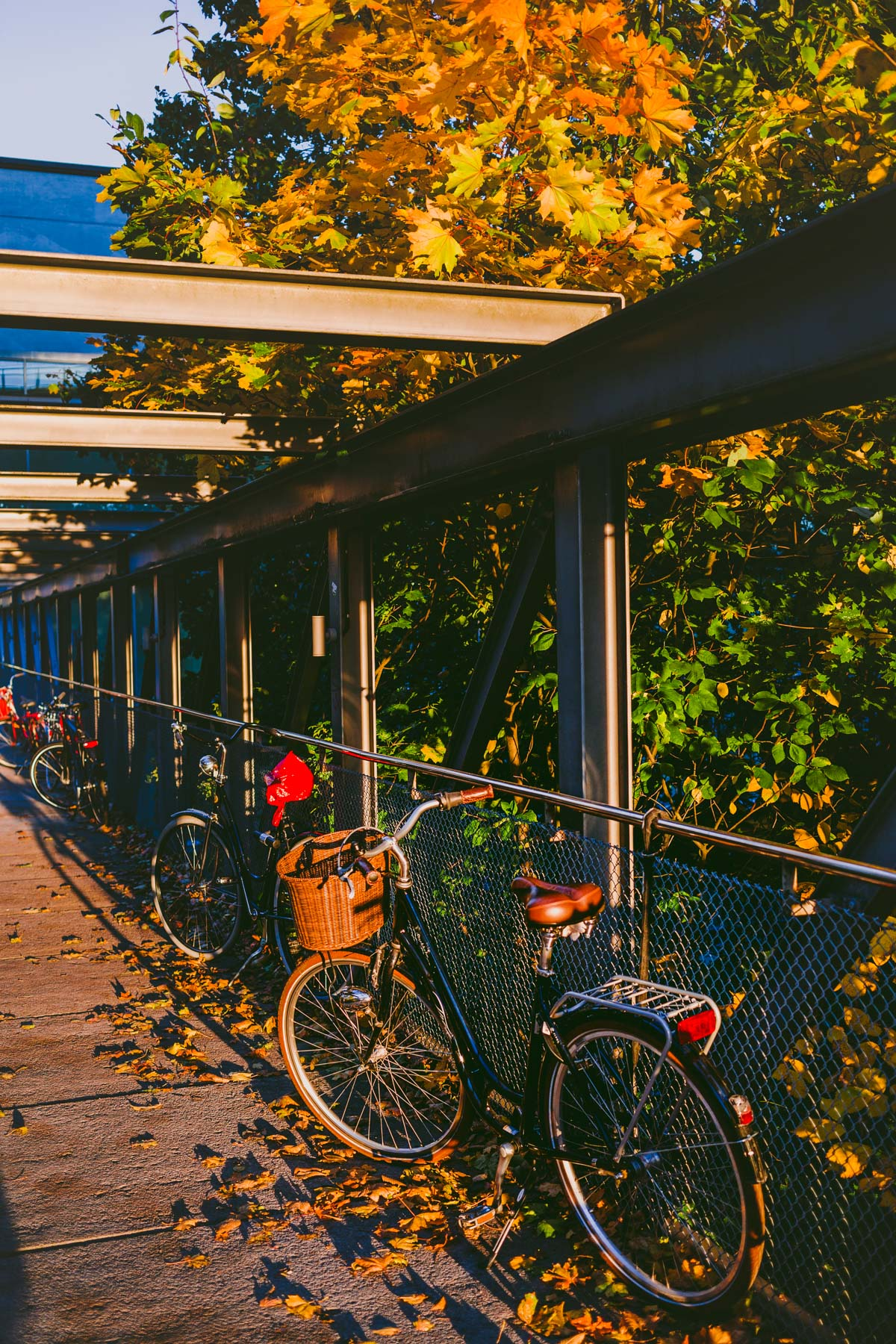 stockholm_by_fall-8