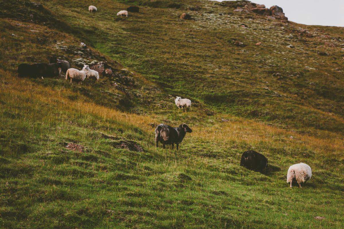 landmannalaugar-30