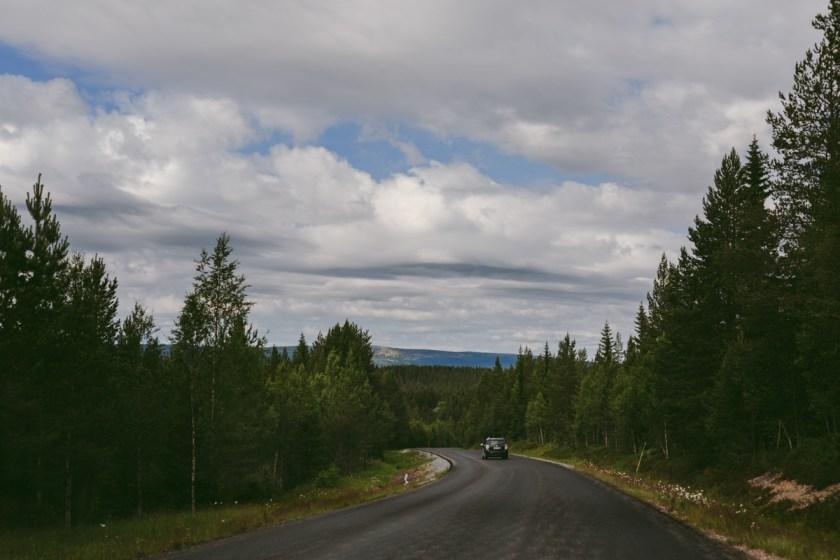 Som en bergsget över Fulufjällets nationalpark
