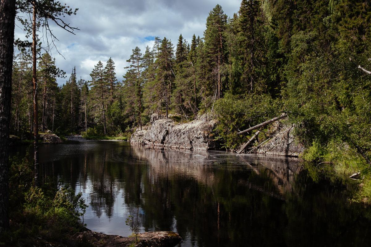 hamra nationalpark vatten svartåleden