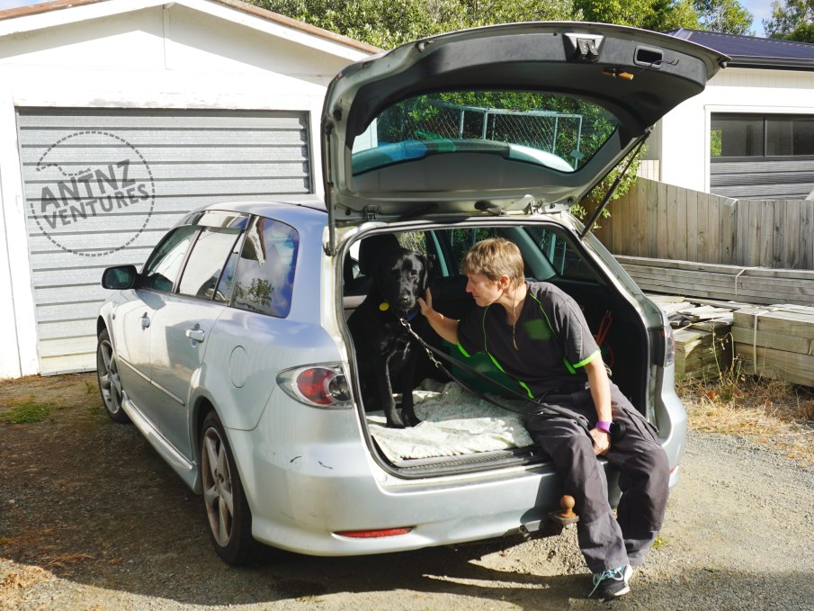 A silver station wagon parked with the front away from the camera, you can see up the side of the car.  The boot is open with ADNZ Ben sitting to the left, looking at the camera. Antnz is on the right looking at Ben stroking his neck