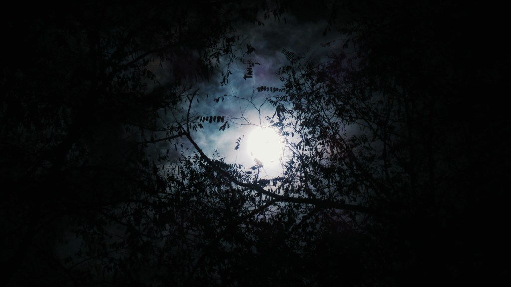 Lua por John Silliman