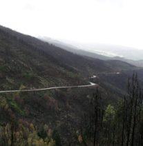 Serra do Marão