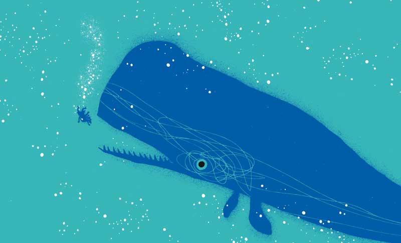 Resultado de imagem para António Jorge Gonçalves baleia