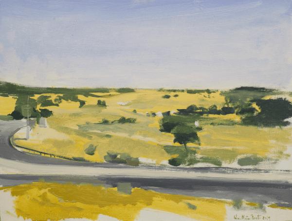 carretera en campo amarillo