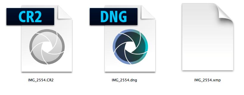 Formato-DNG_Aspetto icone