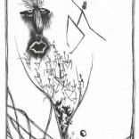 état d'âme 11 - 1998