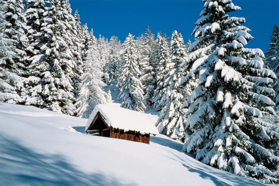 Vacanza invernale  Appartements Ciasa Antor  Vacanze in
