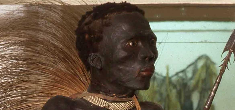 El negro de Banyoles: La deshumanización.
