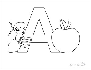 Ant Coloring and Activity pages for kids