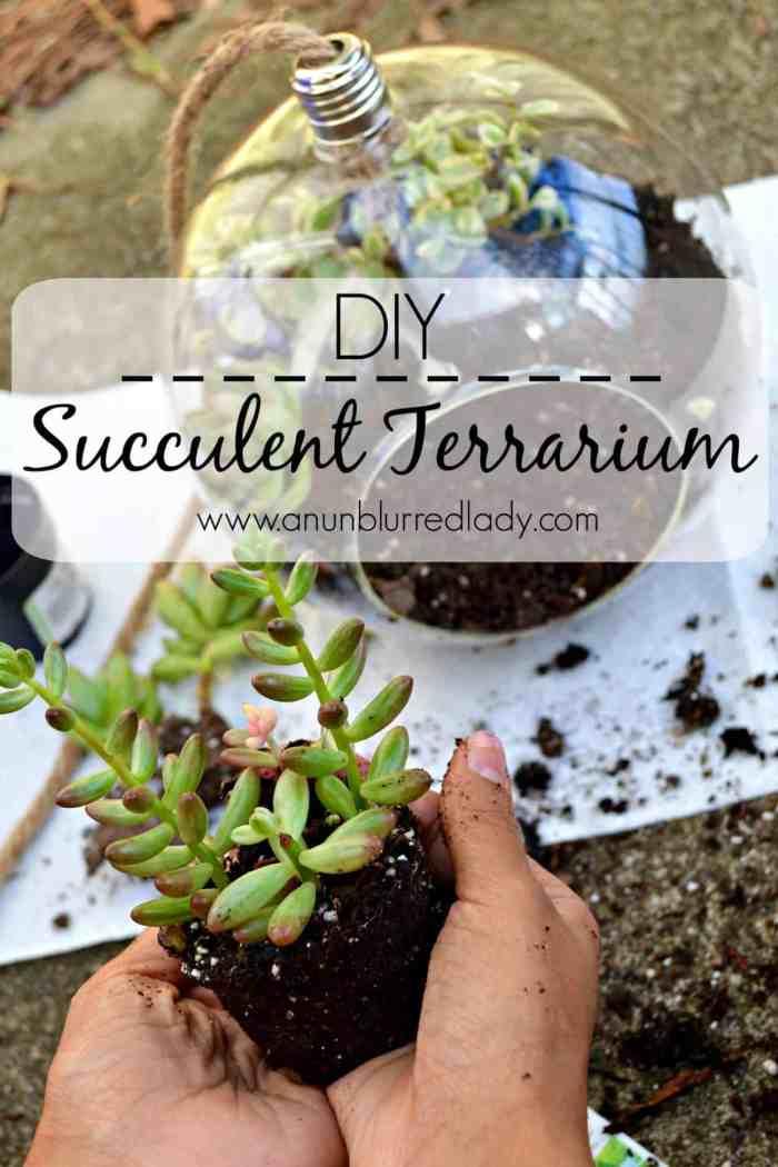 Succulent Terrarium :: DIY