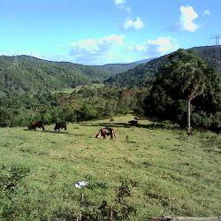 terreno-comercial-en-venta-en-jarabacoa-jarabacoa-8806