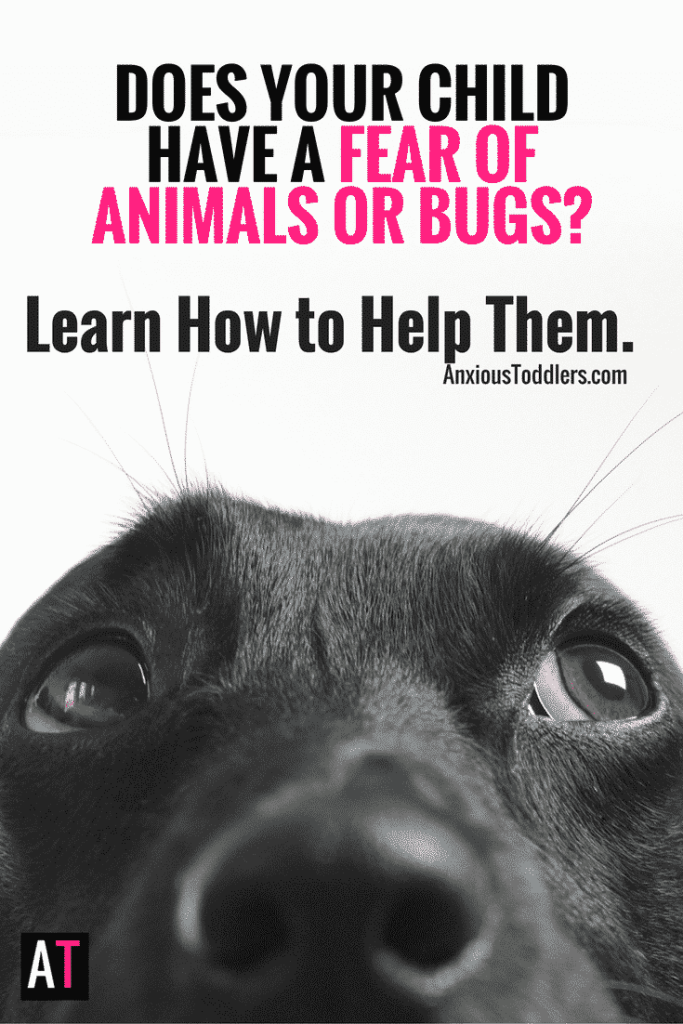 Some kids have a fear of animals, some have a fear of bugs. For most the fear will pass, but for some it will rule their lives. Here's how to help.