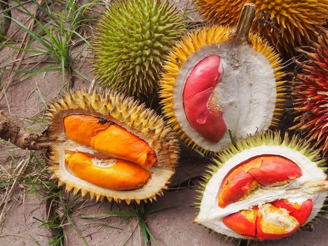 durian-korolevskij-vkus-i-zapax-nishhego