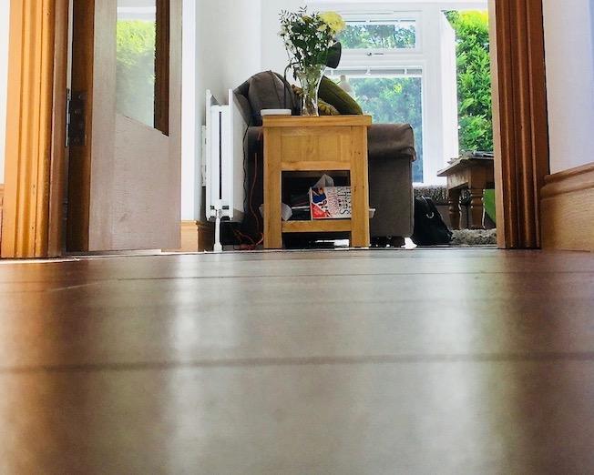 wooden floor view to garden