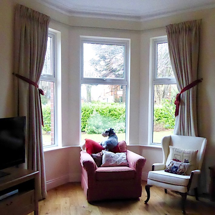 elegant bay window with dog looking out