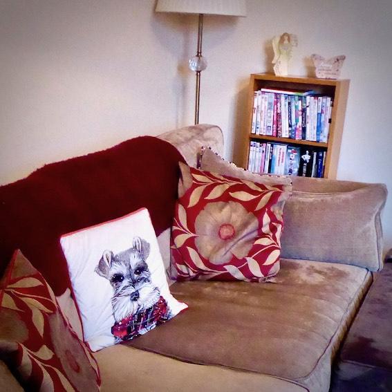 grey sofa with dog cushion