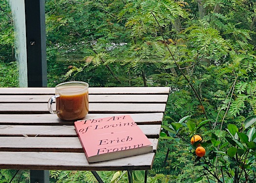 book and tea on balcony, Shenzhen