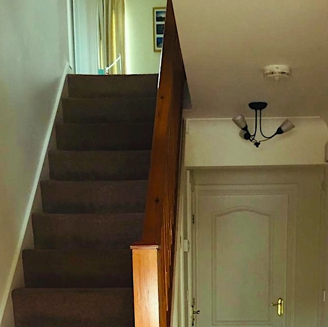 carpeted staircase in hall
